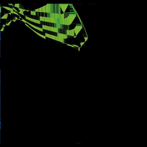 Metaplast Gear